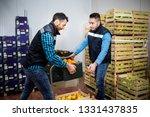 fresh vegetables and fruit in... | Shutterstock . vector #1331437835