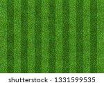 green grass field background...   Shutterstock . vector #1331599535