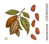 cocoa beans illustration.... | Shutterstock .eps vector #1331810165