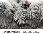 tree branches in the snow.... | Shutterstock . vector #1332078362