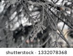 tree branches in the snow.... | Shutterstock . vector #1332078368