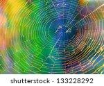 Spider Web  Cobweb ...