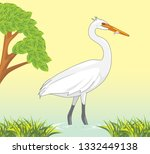 White Heron Caught A Fish In A...