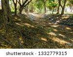 chiangmai  thailand. march  12... | Shutterstock . vector #1332779315