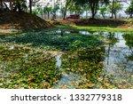 chiangmai  thailand. march  12... | Shutterstock . vector #1332779318