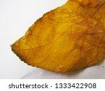 autumn fall leaves on white...   Shutterstock . vector #1333422908
