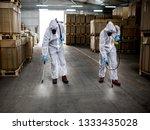 industrial pest control | Shutterstock . vector #1333435028