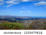 beauty of nature in the... | Shutterstock . vector #1333479818