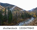 beauty of nature in the... | Shutterstock . vector #1333479845