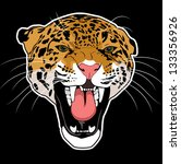 Wild Cat Leopard Vector
