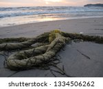 low angle view of a neglected...   Shutterstock . vector #1334506262