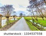dutch polder landscape during... | Shutterstock . vector #1334537558