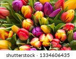 bouquet of colorful tulips.... | Shutterstock . vector #1334606435