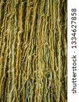 multicolored woolen threads... | Shutterstock . vector #1334627858