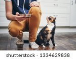 domestic life with pet. man... | Shutterstock . vector #1334629838