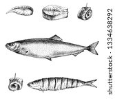 Stock photo detailed illustration of herring made in ink and pen design elements for cafes restaurants 1334638292