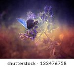 Stock photo vintage butterfly antique style photo of butterfly on flower with grunge old paper texture 133476758