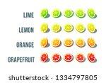 citrus slice design with... | Shutterstock .eps vector #1334797805