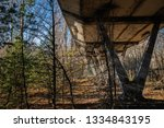 forest reclaiming the zone  in... | Shutterstock . vector #1334843195