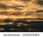 flock of wild geese flying... | Shutterstock . vector #1335245465