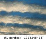 flock of wild geese flying... | Shutterstock . vector #1335245495