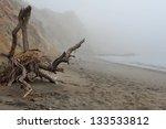 Foggy Morning At California...