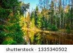forest river sunlight trees...   Shutterstock . vector #1335340502