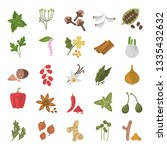 different spices color flat... | Shutterstock .eps vector #1335432632