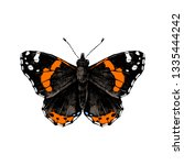 Colorful Hand Drawn Red Admiral ...