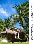 Thatched Cottage Under Tropica...