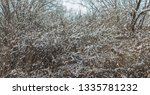 winter landscape with snow | Shutterstock . vector #1335781232