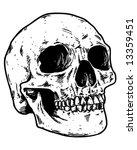 sketched skull vector | Shutterstock .eps vector #13359451