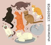 cats show grooming or... | Shutterstock .eps vector #1336054928