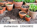 Flower Pots With Plants And...