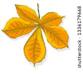 leaf autumn colorful... | Shutterstock . vector #1336179668