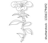 artwork of coloring page for... | Shutterstock . vector #1336179692