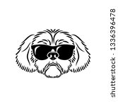 shih tzu dog face wearing... | Shutterstock .eps vector #1336396478
