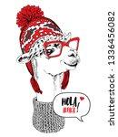 Funny Poster. Portrait Of Llama ...