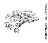 ginger  root. indian seasoning. ... | Shutterstock .eps vector #1336495058