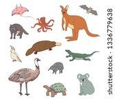 australian animals hand drawn...   Shutterstock .eps vector #1336779638