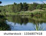 wooden bridge over the river in ... | Shutterstock . vector #1336807418