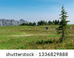 beautiful high plateau covered... | Shutterstock . vector #1336829888