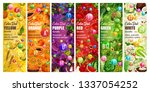 color diet vitamins  vegetables ... | Shutterstock .eps vector #1337054252