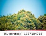 ha noi  viet nam    feb  21 ...   Shutterstock . vector #1337104718