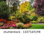 butchart gardens    gardens on... | Shutterstock . vector #1337165198