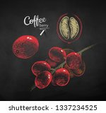 vector chalk drawn sketches set ... | Shutterstock .eps vector #1337234525