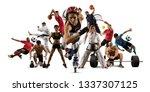 huge multi sports collage...   Shutterstock . vector #1337307125
