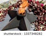 eternal fire and flowers....   Shutterstock . vector #1337348282
