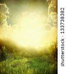 green meadow under blue sky... | Shutterstock . vector #133738382