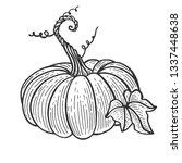 pumpkin fruit sketch engraving... | Shutterstock .eps vector #1337448638